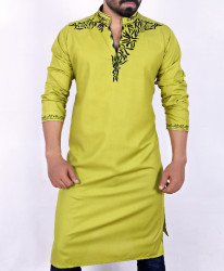 Light Olive Green Stylish Embroidered Kurta ARK-901