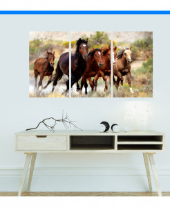 Running Horses Scenery Design Wall Frame BNS-123