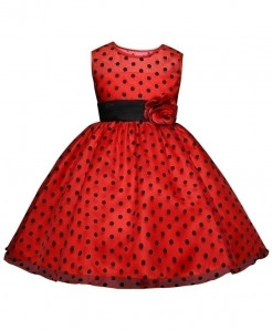 Red Dot Netted Toddler Stylish Girl Dress