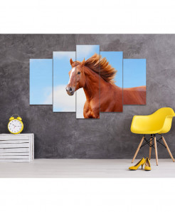 Horse 5 Piece HD Wall Frame SA-101