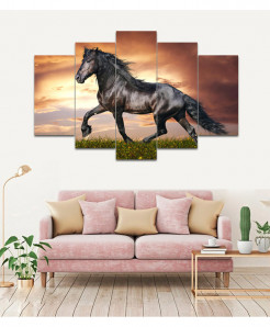 Fantastic Horse 5 Piece HD Wall Frame SA-98