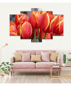 Orange Tulip 5 Piece HD Wall Frame SA-79