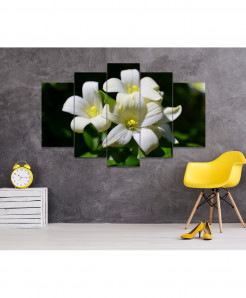 Flower 5 Piece HD Wall Frame SA-76