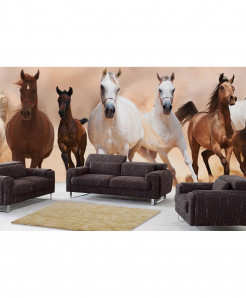 3D White Brown Horse Wallpaper BNS-349