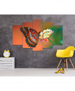 Butterfly 5 Piece HD Wall Frame SA-43