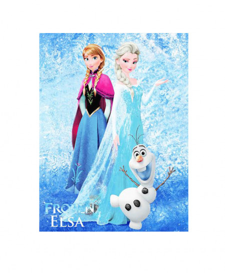 Frozen Elsa Kids Cartoon Single Bedsheet BA-1133