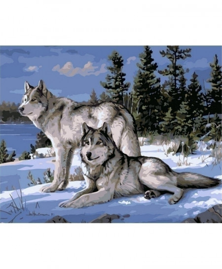 Wolf Animals DIY Painting Canvas Acrylic Coloring Painiting
