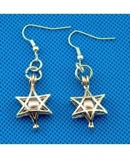 Star Cage Pendant Silver Plated Charm Drop Earrings
