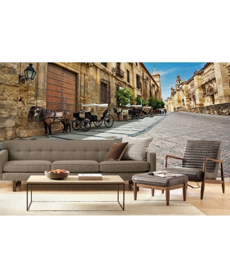 3D Old Town In Spain Wallpaper BNS-339